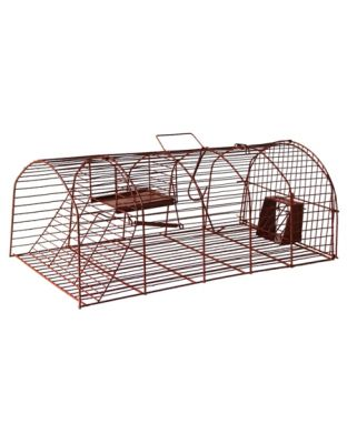 Lebendfalle Ratte (braun)