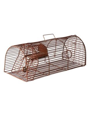 Lebendfalle Maus (braun)