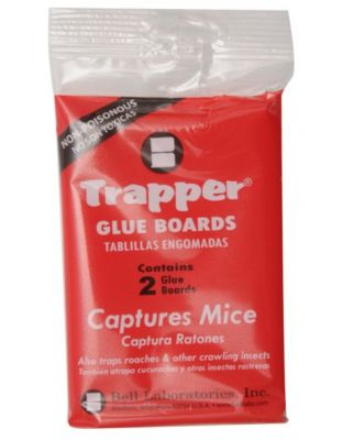 Trapper® mouse size tray
