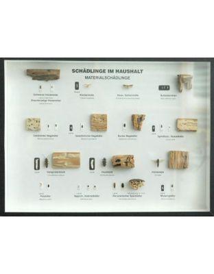 Schaukasten: Schädlinge im Haushalt - Material-